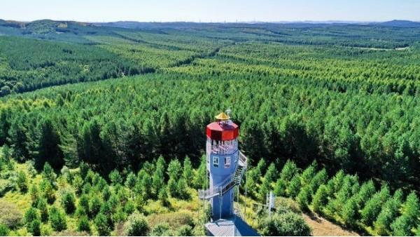 外媒看中国:塞罕坝展现了中国生态文明建设奇迹